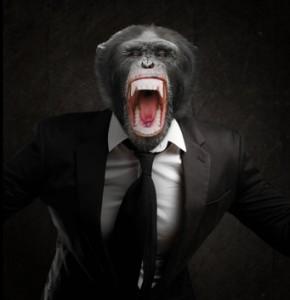 attacchi di rabbia - counseling, formazionepersona