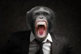 Attacchi di rabbia