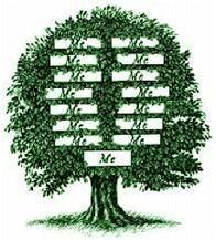 Corso di aggiornamento, Costellazioni familiari: i principi della coscienza collettiva e sistemica