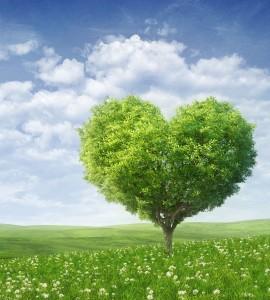 valori counseling artemisia